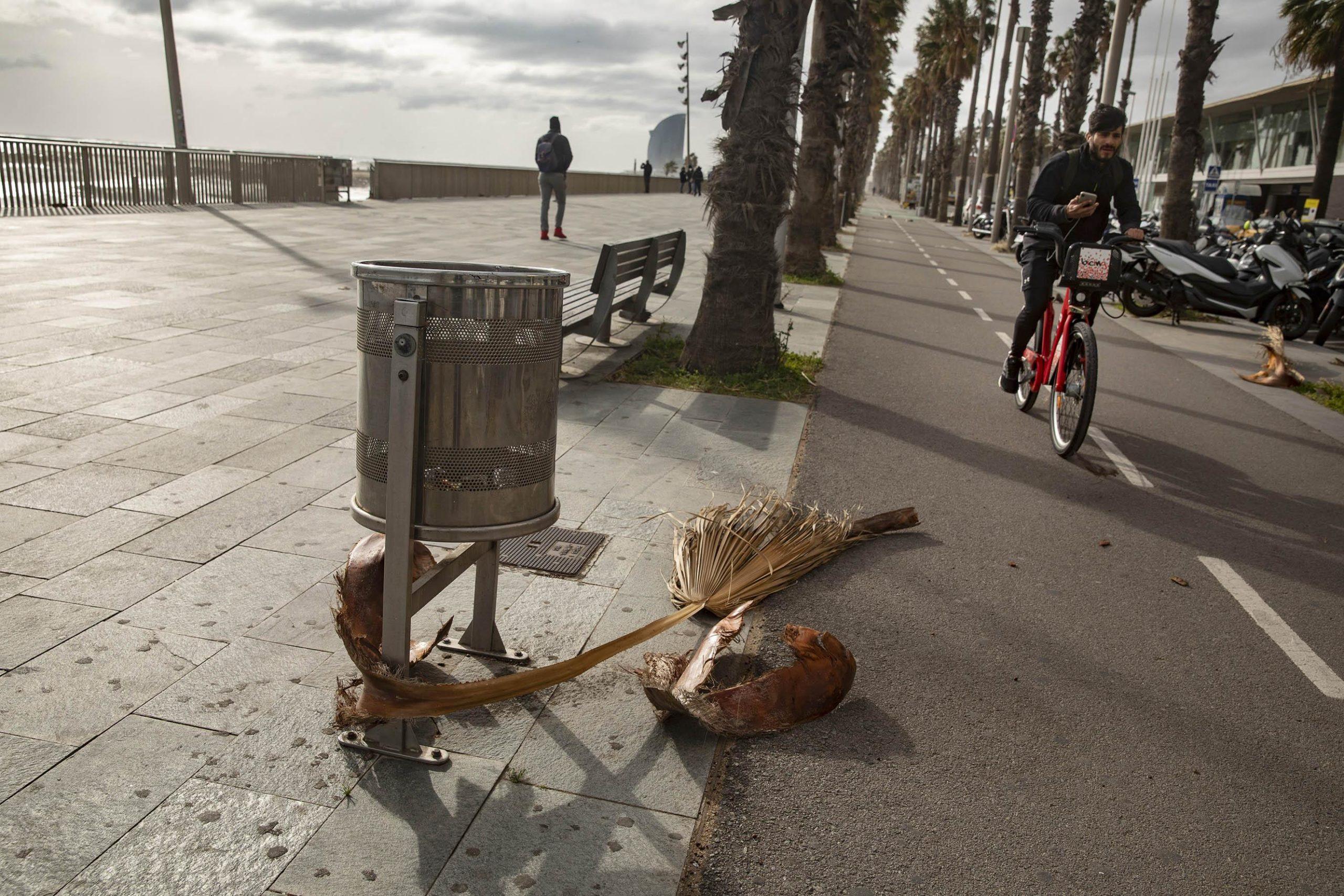 Al passeig marítim, alguns han desafiat el temporal 'Glòria' caminant o amb bici / Jordi Play