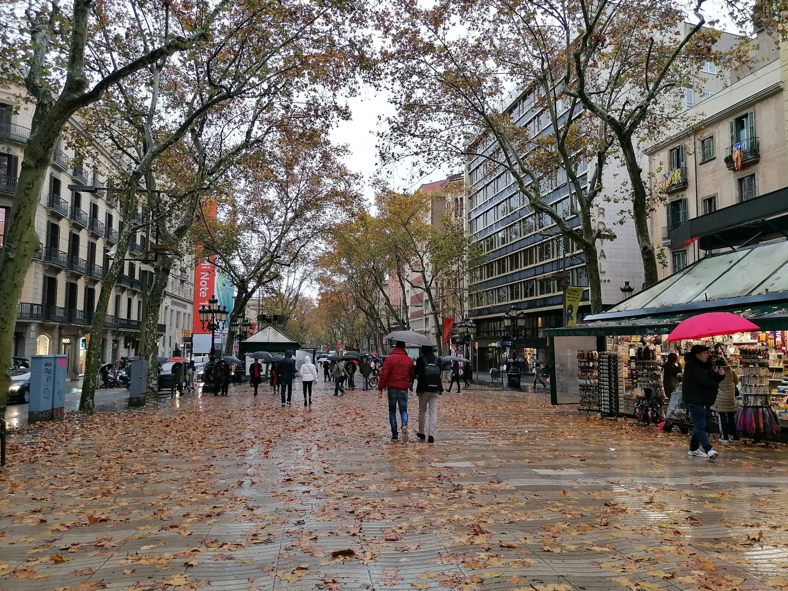 La Rambla de Barcelona, un dia d'hivern plujós / MMP