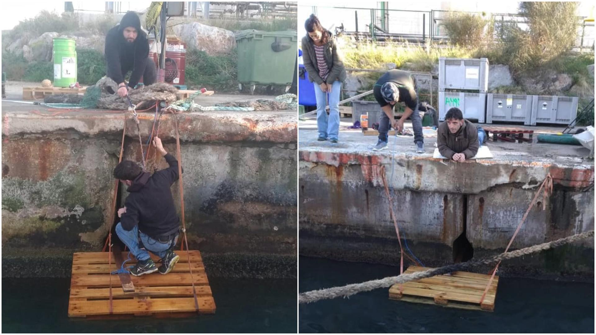 Rescat de la gata 'Nena' al port de Barcelona / Facebook - Los Cuatro de la Empanadilla