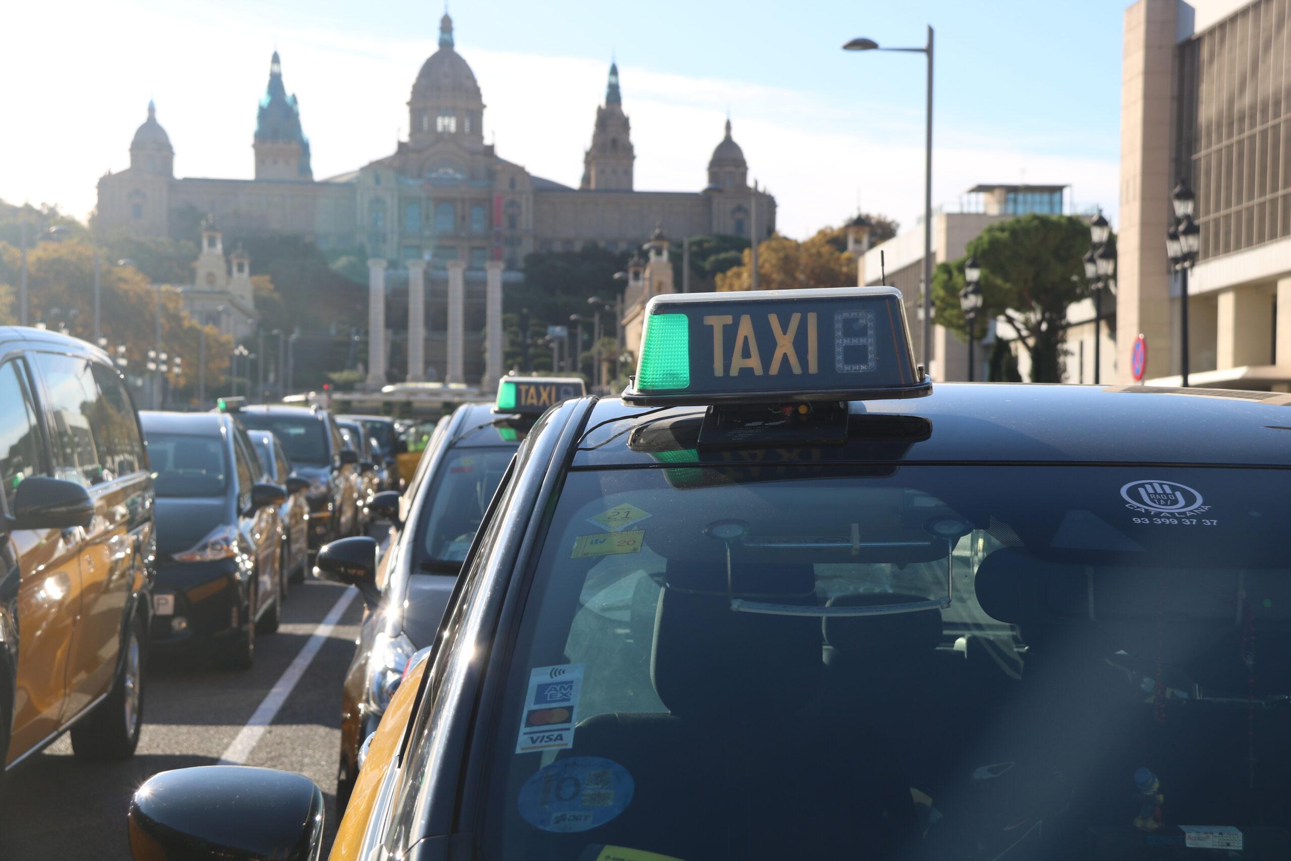Un taxi durant de la concentració de taxistes a l'avinguda Maria Cristina amb el MNAC de fons prèvia a la marxa lenta per Barcelona / ACN